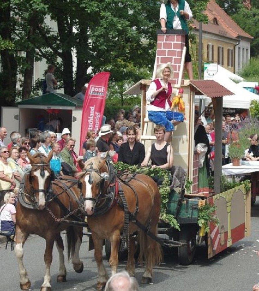 Gespann zum Elbhangfest in Dresden